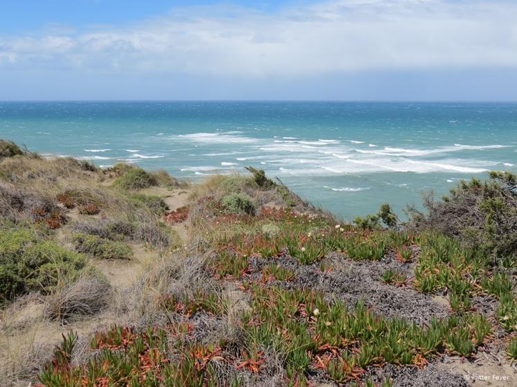 Beautiful natural coast line of Peninsula Valdes Argentina