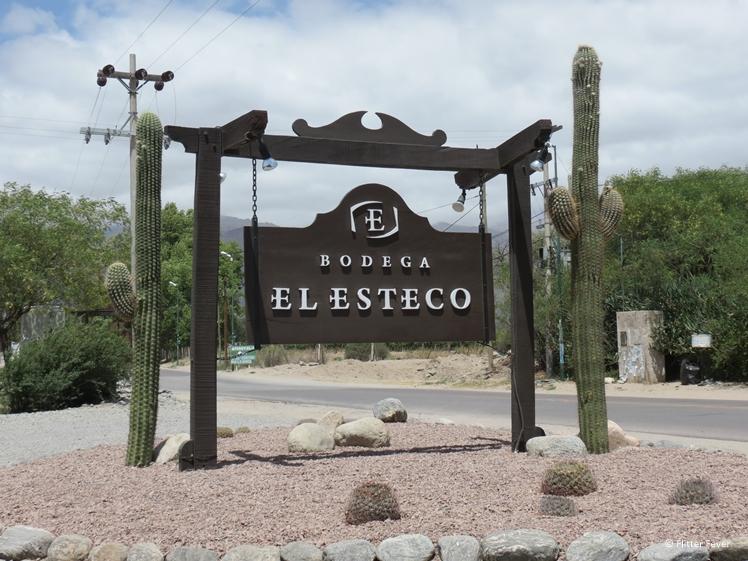 Bodega El Esteco road sign with cacti