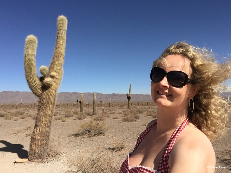 NP Los Cardones woman with huge cacti