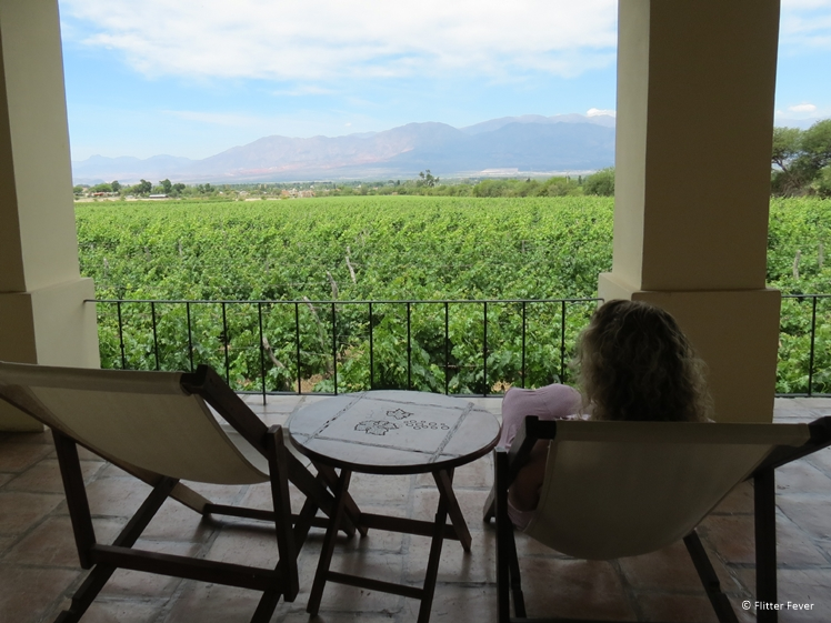 Room with a view at Vinas de Cafayate Wine Resort