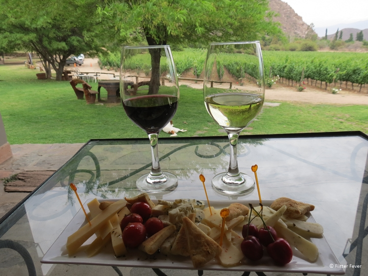 Wine, cheese and vineyard view at Finca Las Nubes Jose L. Mounier in Cafayate Argentina