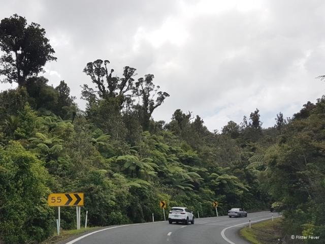 On the way to Hahei at Highway 25 Coromandel Peninsula