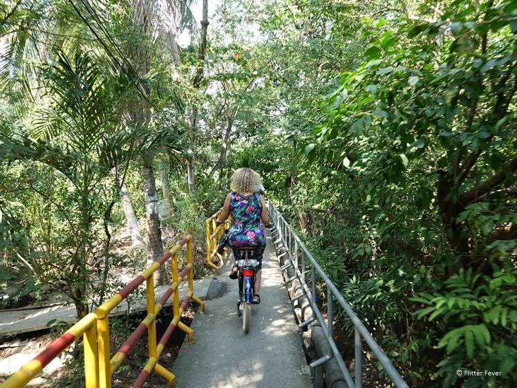 Bicycling through Bang Kachao the jungle of Bangkok