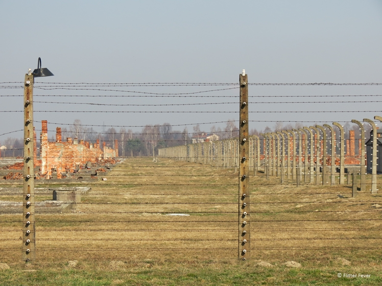 Barbwire and remains of barracks at Auschwitz II
