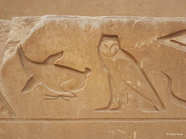 Hieroglyphics at the Tombs of Mereruka in Saqqara Egypt