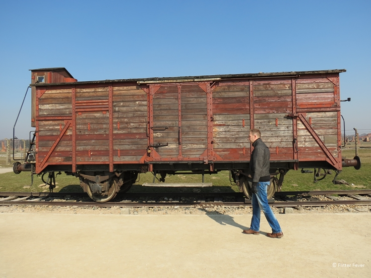 The wagons peopele got transported with to Auschwitz